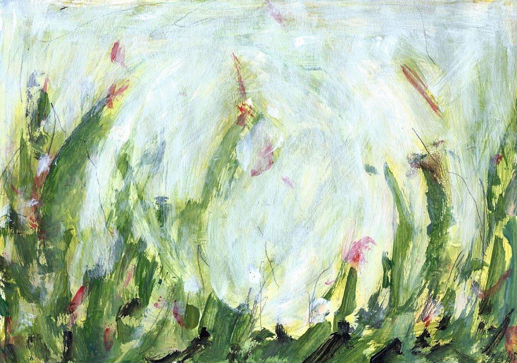 bloemenveld-6.jpg
